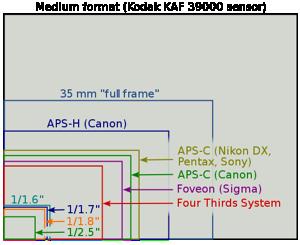 550px-Sensor_sizes_overlaid_inside.png