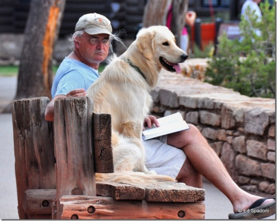 man and dog on bench