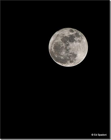 Perigee moon by Ed Spadoni