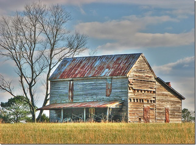Maryann Goldman, HDR barn