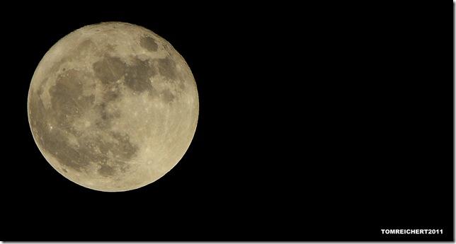 Perigee Moon by Tom Reichert