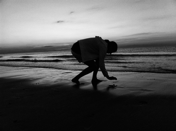Sunset in B&W, beach, sand, shell