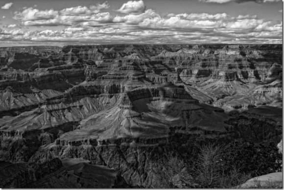 Grand Canyon, South Rim by Judy Horton in black and white, BW