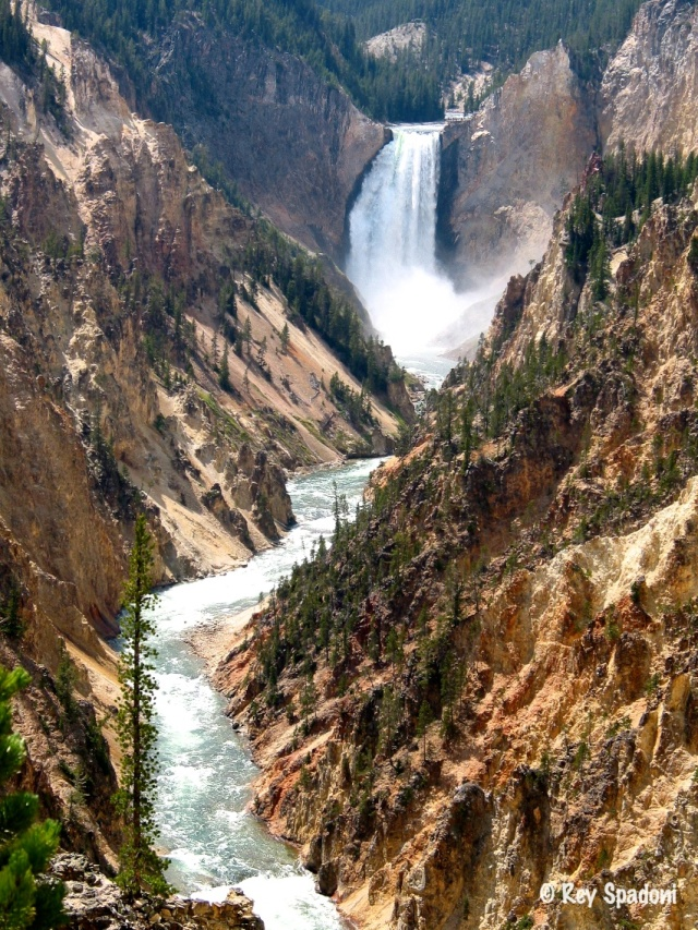 """Yellowstone River"""
