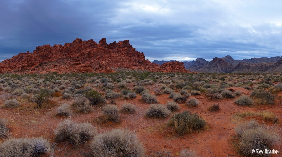 """""""Valley of Fire"""""""