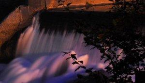 Night Falls by Rodney Daly