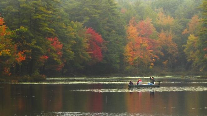 2 guys photo, pond, foliage, maine, steep falls, autumn, fall, rain