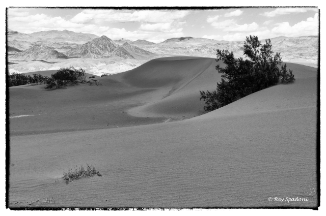 death valley, rey spadoni, 2 guys photo