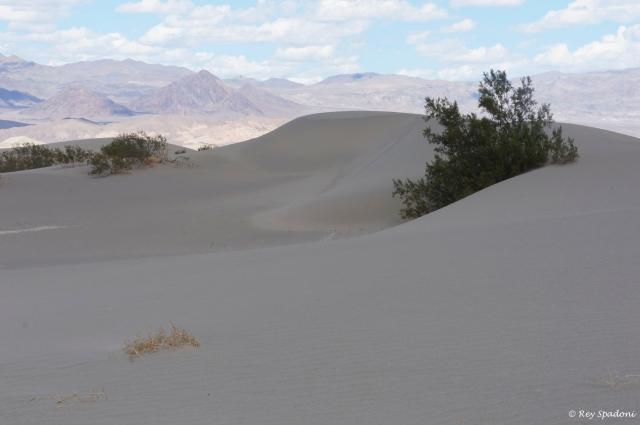 death valley, 2 guys photo, rey spadoni
