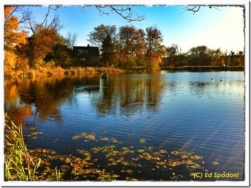 Autumn, iPhone 4