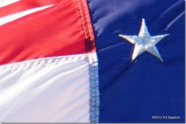 Sony NEX 5N, flag