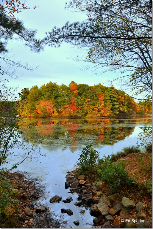 fall, foliage, autumn, change, 2 guys photo, season