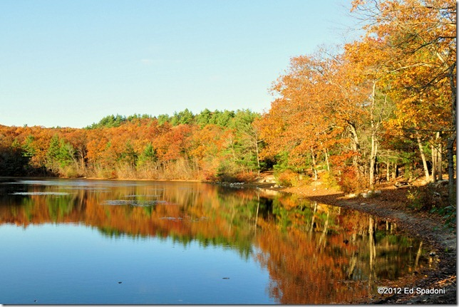 rocky woods, chickering, pond, foliage, fall, autumn, color, 2 guys photo