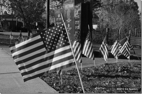 Sony NEX 6, in-camera B&W effect, flags, veterans
