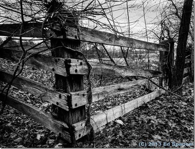 fence, black and white, B&W, Sony NEX 6, 2 guys photo