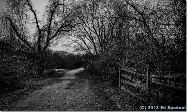 path, farm, black and white, BW, Sony NEX 6