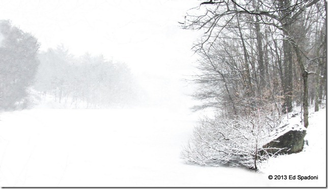 Snow, winter, ice, pond, white out
